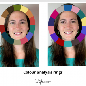 colour-rings-analysis
